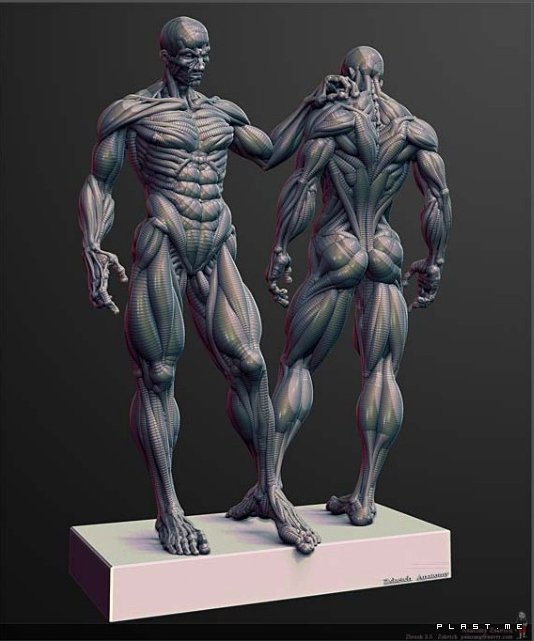 Showing picture: pixologic zbrush